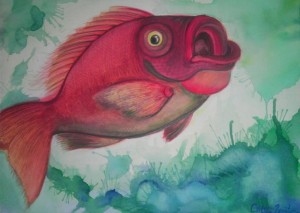 Red Snapper, copyright 2012, Caitlin Funston