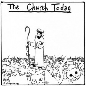 The Church Today - Jesus Herding Cats